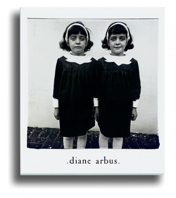 essays on diane arbus Diane arbus (march 14, 1923 sontag's essay on arbus is still the most widely read on any photographer, even though it is exemplary for its shallowness.